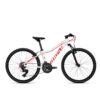 Велосипед Ghost 24 Lanao 2.4 2019 2