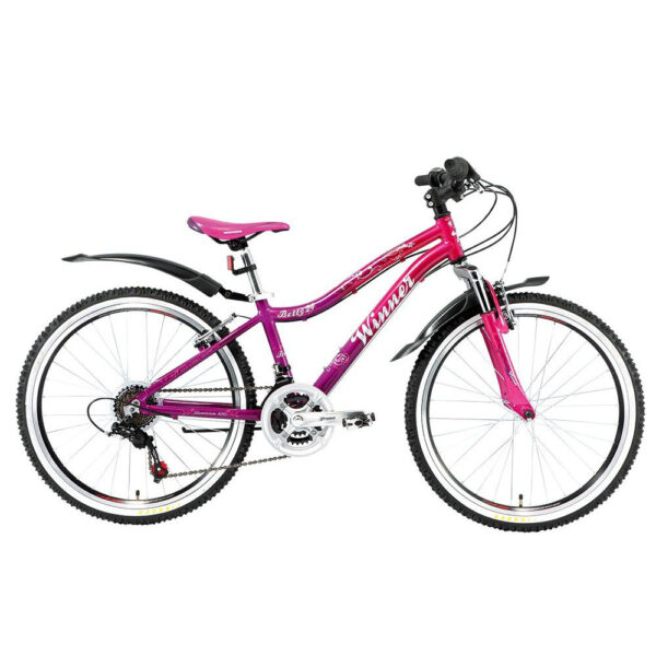 Подростковый  Велосипед 24 WINNER BETTY 2018 20